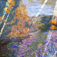 Autumnal metamorphosis by Alexander Vlasyuk - search and link Fine Art with ARTdefs.com