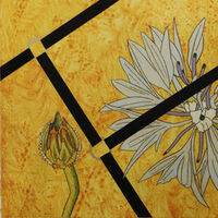 Captured Bloom 8 by Walter Fydryck - search and link Fine Art with ARTdefs.com