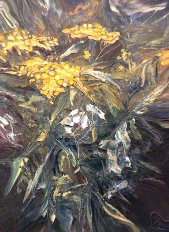 Tansy by Alexander Vlasyuk - search and link Fine Art with ARTdefs.com