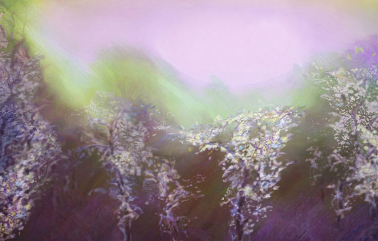 Spring garden-3 by Alexander Vlasyuk - search and link Fine Art with ARTdefs.com