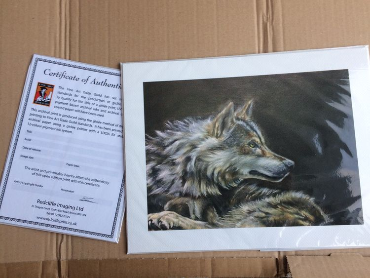 Greywolf - Giclee Print by Colin Mowat - search and link Fine Art with ARTdefs.com