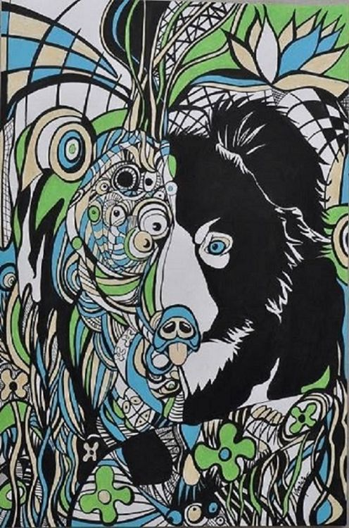 Orso-wildlife(print) by Virginia Ersego - search and link Fine Art with ARTdefs.com