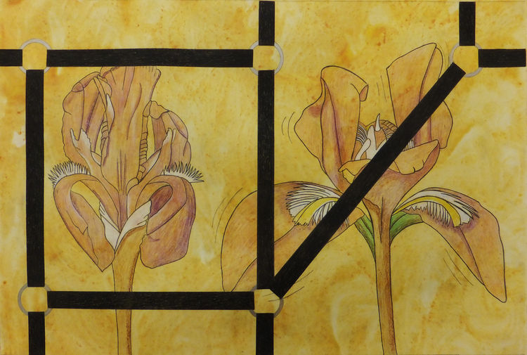 Captured Bloom 1 by Walter Fydryck - search and link Fine Art with ARTdefs.com