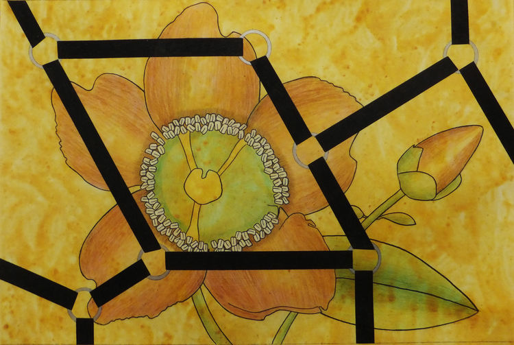 Captured Bloom 9 by Walter Fydryck - search and link Fine Art with ARTdefs.com