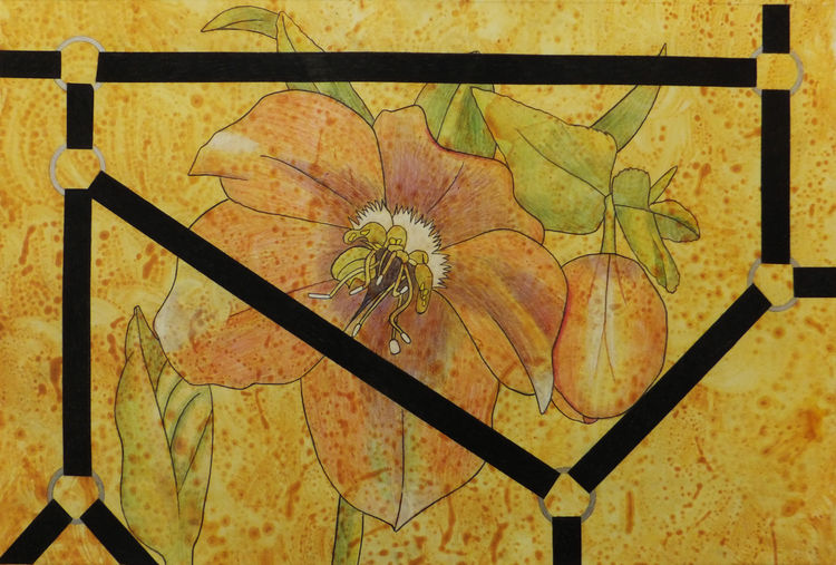 Captured Bloom 6 by Walter Fydryck - search and link Fine Art with ARTdefs.com