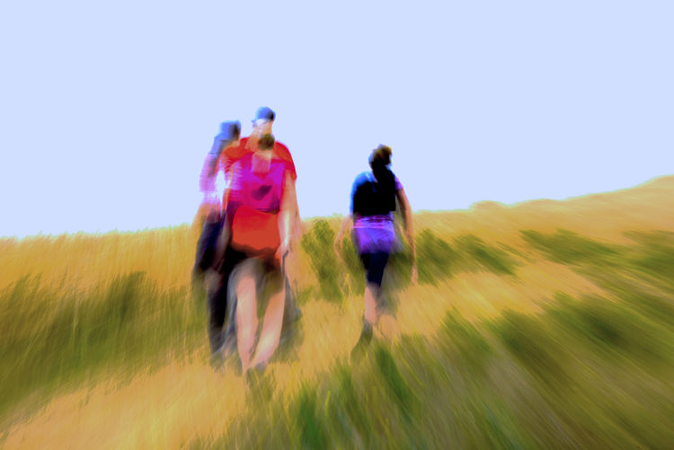 Road Less Taken by George Kaplan - search and link Fine Art with ARTdefs.com