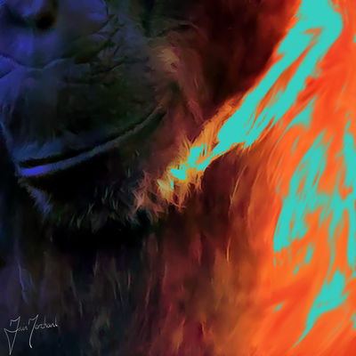 Chimp by Iain Merchant - search and link Fine Art with ARTdefs.com