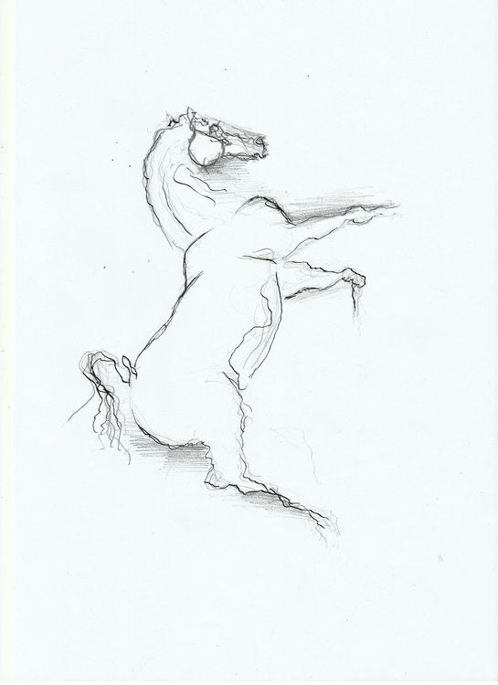 horse 12 by L Tab - search and link Fine Art with ARTdefs.com