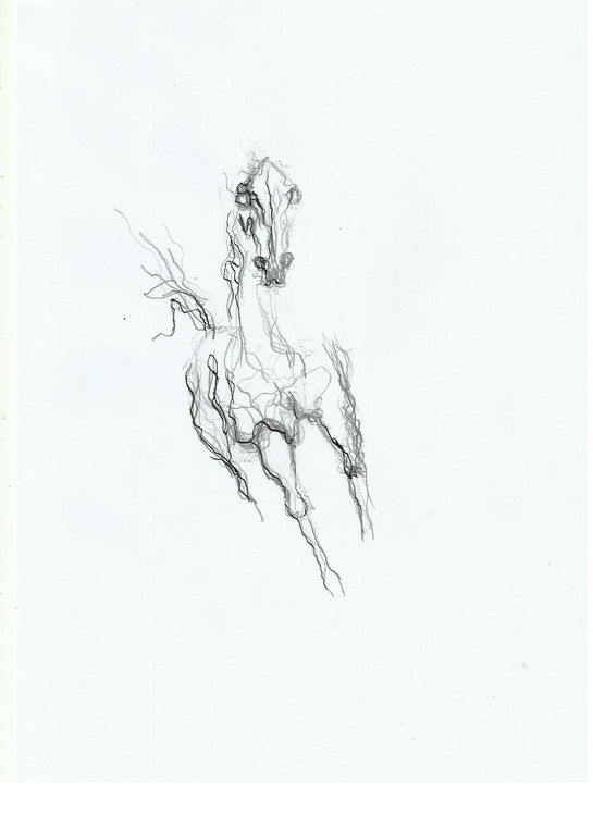horse 11 by L Tab - search and link Fine Art with ARTdefs.com