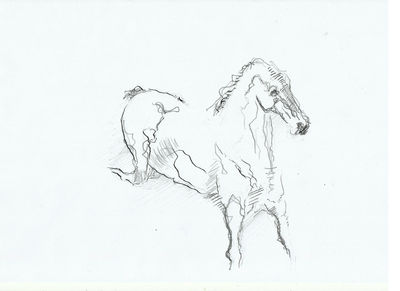 horse 9 by L Tab - search and link Fine Art with ARTdefs.com