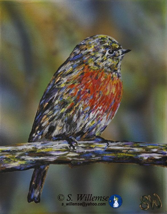 Red Robin by Susan Willemse - search and link Fine Art with ARTdefs.com