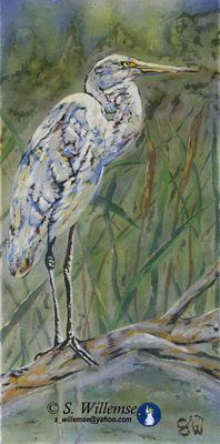 Egret by Susan Willemse - search and link Fine Art with ARTdefs.com