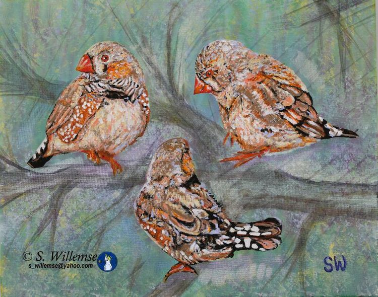 Finches by Susan Willemse - search and link Fine Art with ARTdefs.com