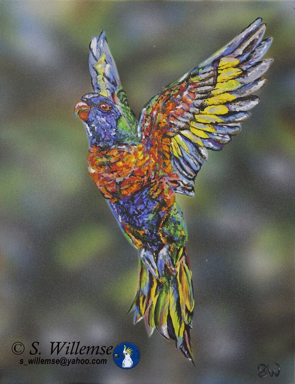 Hope Rainbow Lorikeet by Susan Willemse - search and link Fine Art with ARTdefs.com