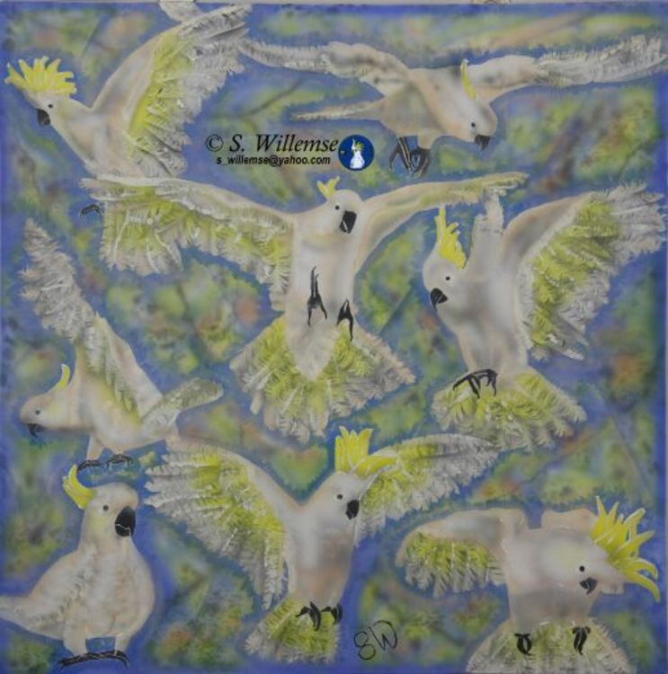 Flock Sulphur Cockatoos by Susan Willemse - search and link Fine Art with ARTdefs.com