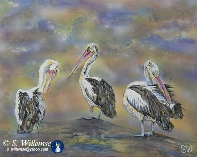 Pelicans by Susan Willemse - search and link Fine Art with ARTdefs.com