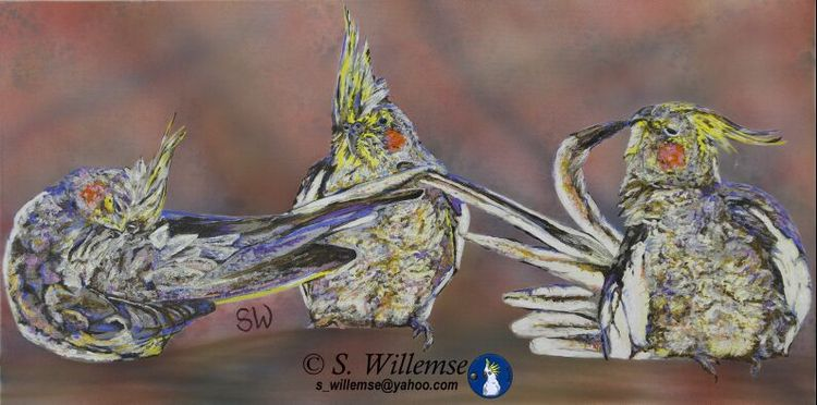 Cockatiels by Susan Willemse - search and link Fine Art with ARTdefs.com