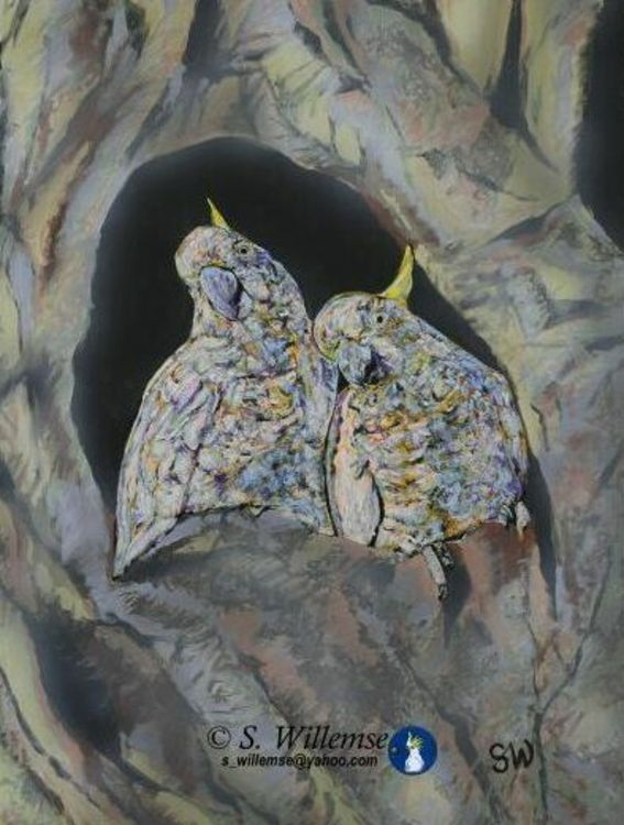 Bindubi babies by Susan Willemse - search and link Fine Art with ARTdefs.com