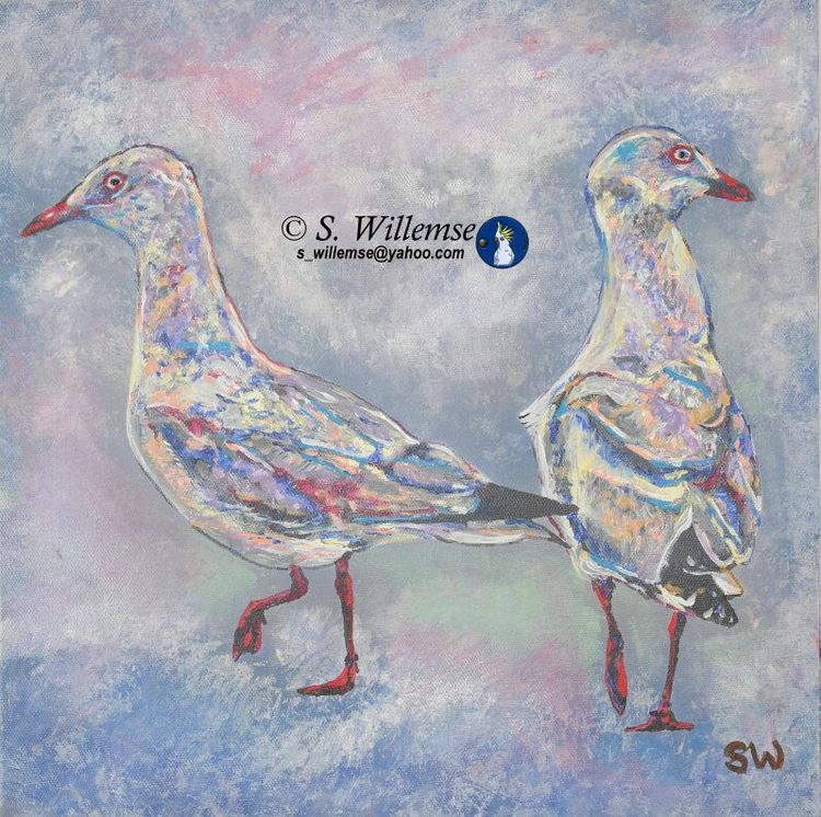 Seagulls by Susan Willemse - search and link Fine Art with ARTdefs.com