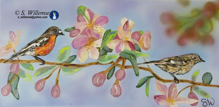 Robins in spring blossoms by Susan Willemse - search and link Fine Art with ARTdefs.com