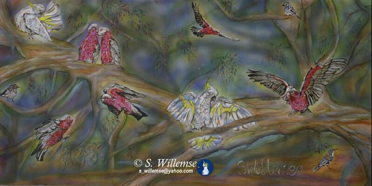 Cockatoo's, Galahs and LBJ's by Susan Willemse - search and link Fine Art with ARTdefs.com