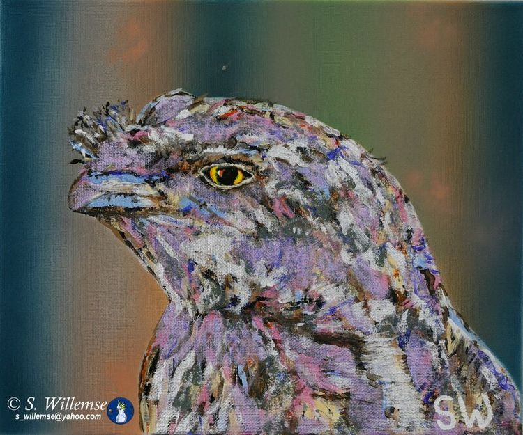 Tawny Frogmouth by Susan Willemse - search and link Fine Art with ARTdefs.com