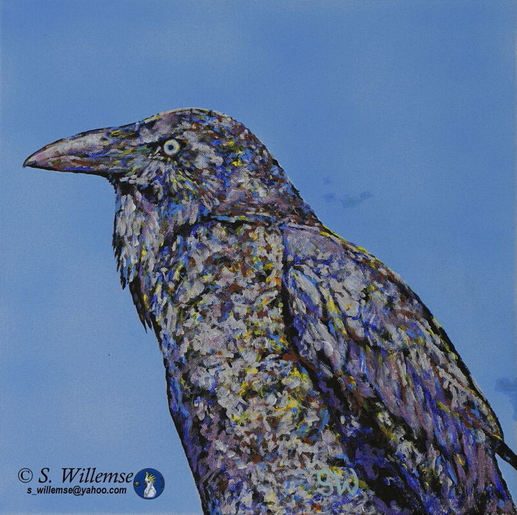 Crow by Susan Willemse - search and link Fine Art with ARTdefs.com