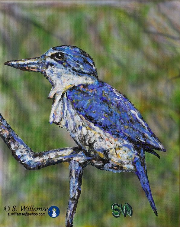 Kingfisher by Susan Willemse - search and link Fine Art with ARTdefs.com