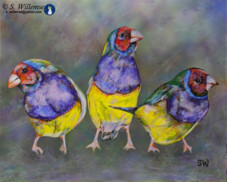 Red-headed Gouldian Finches by Susan Willemse - search and link Fine Art with ARTdefs.com
