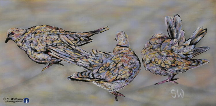 Doves by Susan Willemse - search and link Fine Art with ARTdefs.com