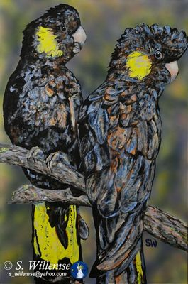 The Girls: Black Cockatoos by Susan Willemse - search and link Fine Art with ARTdefs.com