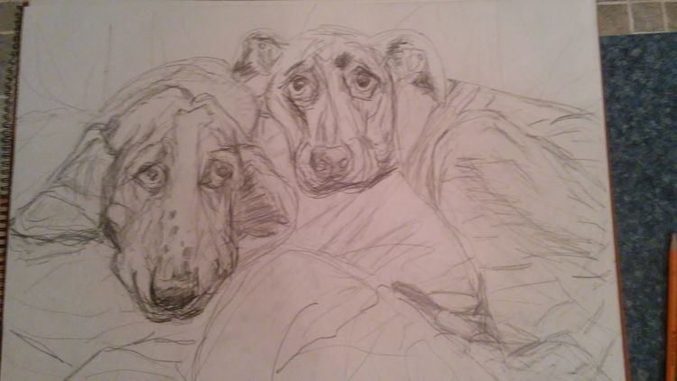Wedding Pups by Susan Royer - search and link Fine Art with ARTdefs.com