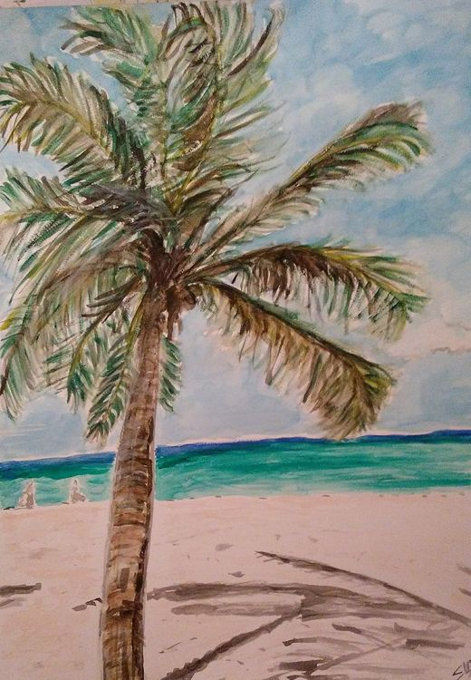 Dominican Palm by Susan Royer - search and link Fine Art with ARTdefs.com