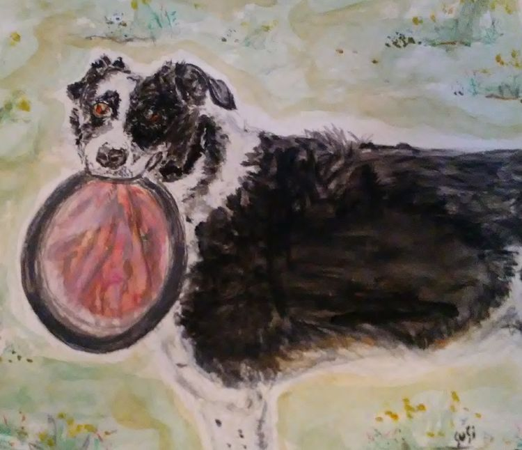 Bandit by Susan Royer - search and link Fine Art with ARTdefs.com