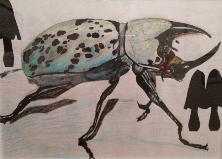 Hercules Beetle by Susan Royer - search and link Fine Art with ARTdefs.com