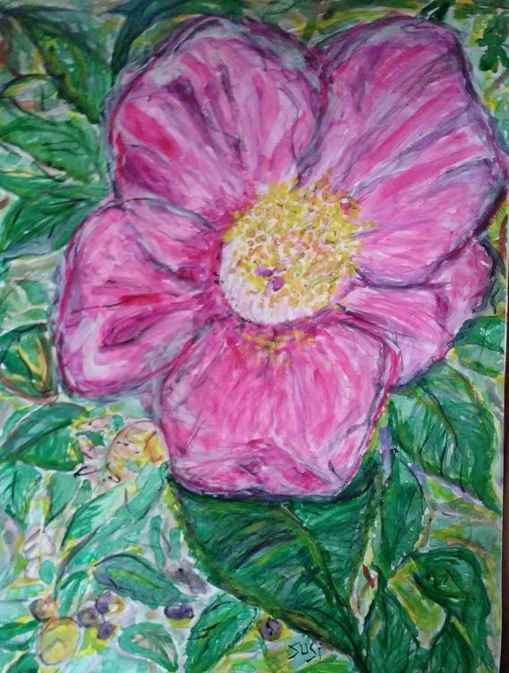 Winter Camellia by Susan Royer - search and link Fine Art with ARTdefs.com