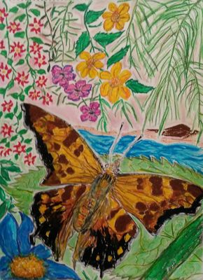 Comma Butterfly by Susan Royer - search and link Fine Art with ARTdefs.com