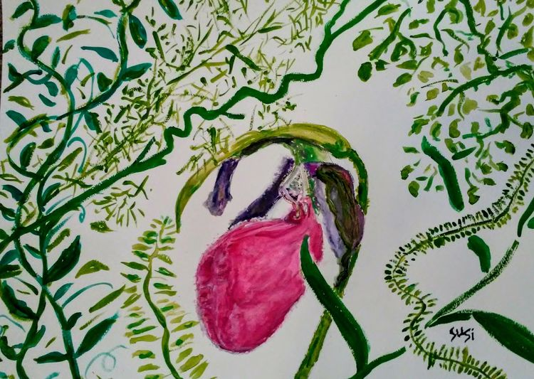 Wild Lady Slipper by Susan Royer - search and link Fine Art with ARTdefs.com
