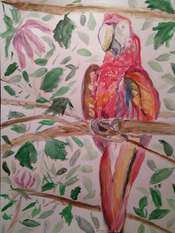 Jamaican Macaw by Susan Royer - search and link Fine Art with ARTdefs.com