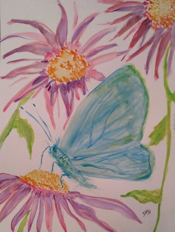 Blue Feeder by Susan Royer - search and link Fine Art with ARTdefs.com